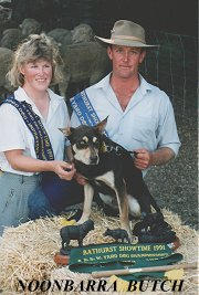 Michael & Linda Johnston with Noonbarra Butch after winning the 1991 NSW Yard Championships.